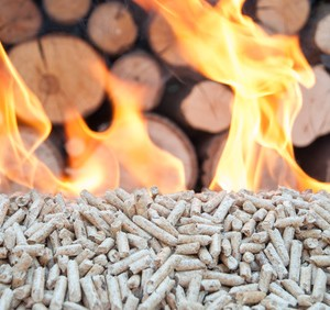 prix bois de chauffage
