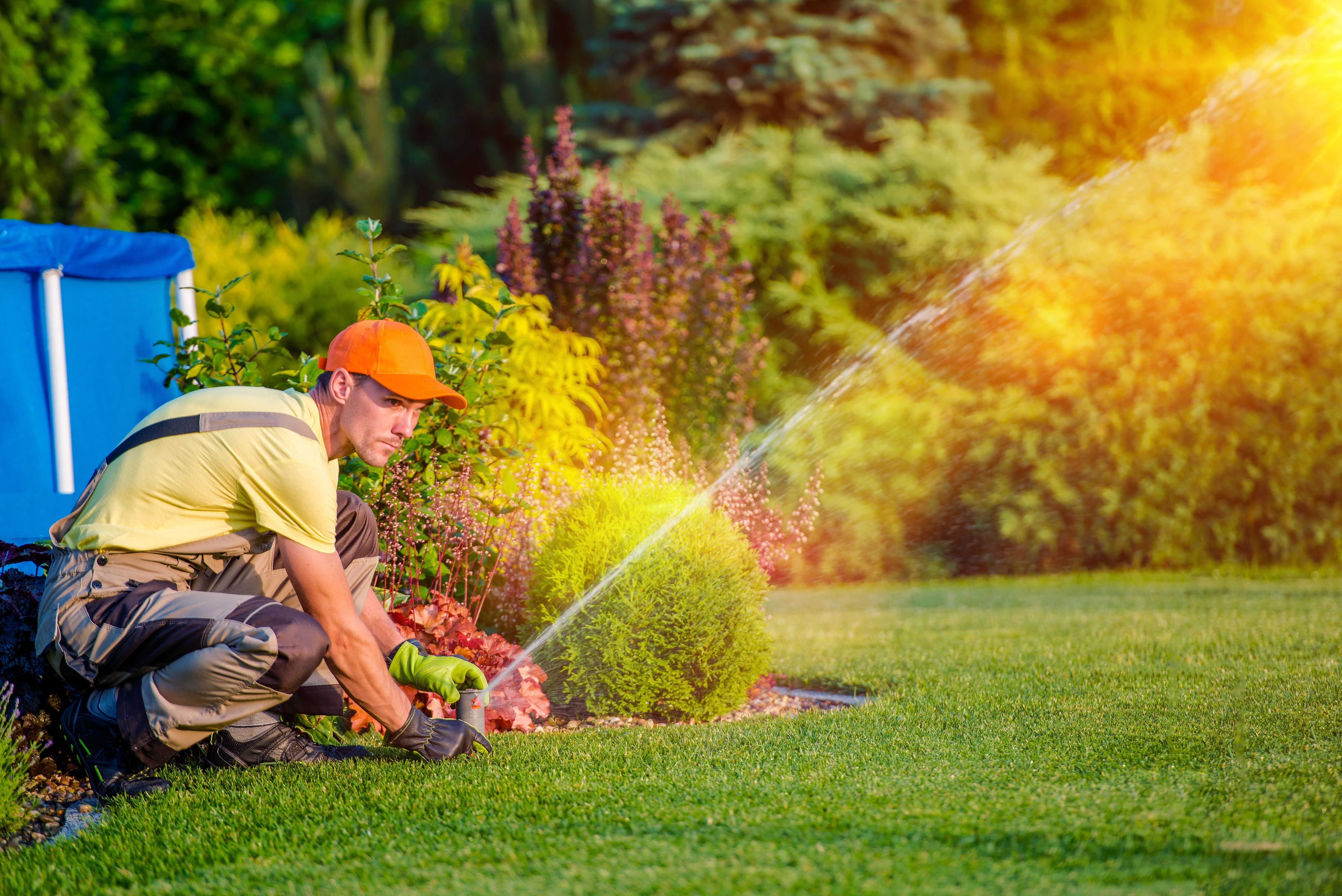 Aménagement D Un Parterre De Fleurs le guide de l'aménagement de jardin : prix, prestations et