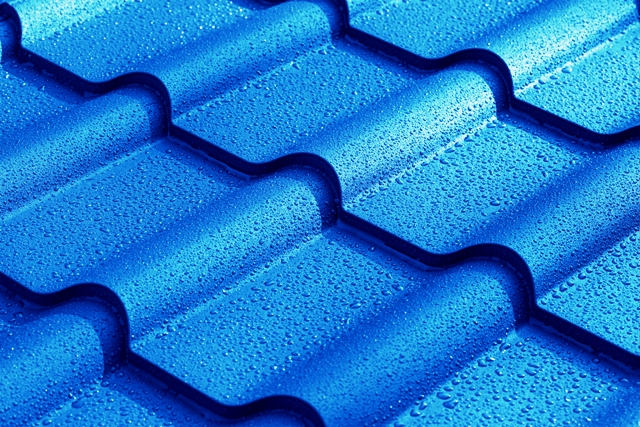 tarif peinture sur toiture