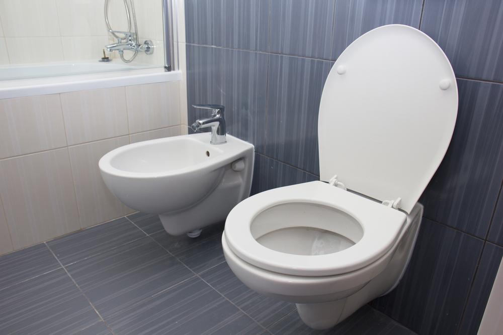 Carrelage WC : prix, lequel choisir et photos de réalisations ...