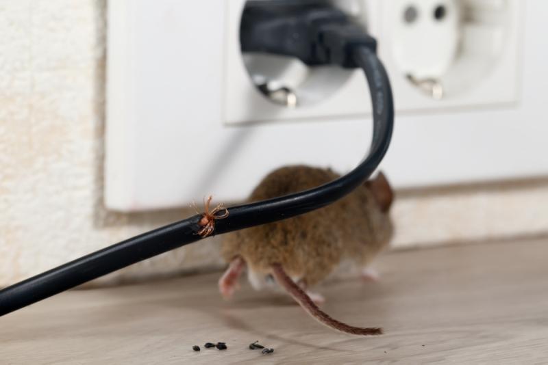 securite electrique de la cuisine