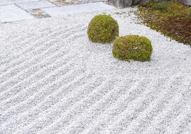 Gravier stabilisé dans un jardin japonais