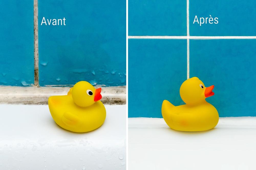 Moisissures avant et après traitement