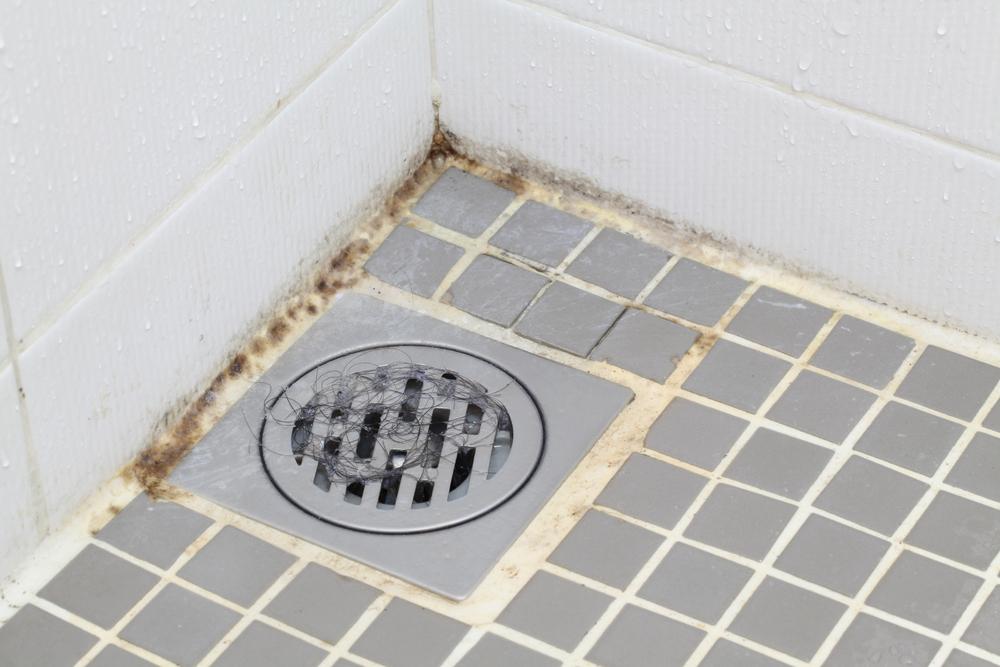 Moisissures sur le receveur de douche