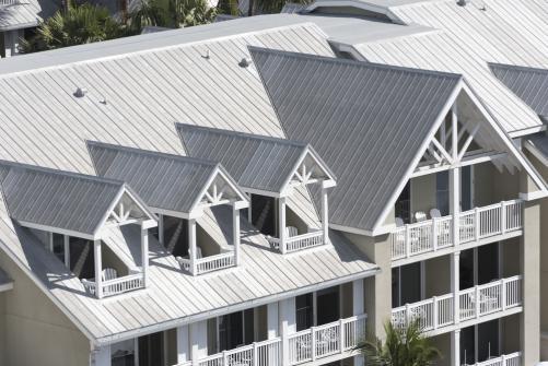 Chien assis sur toiture : prix, pose - Guide complet par nos experts ...