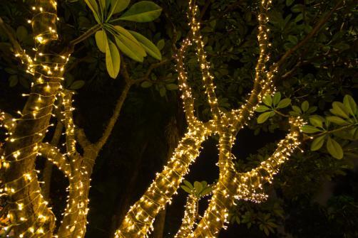 Guirlande lumineuse decorative jardin