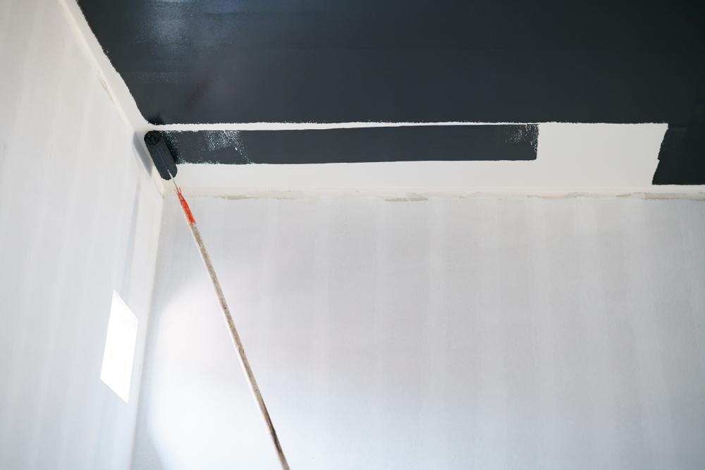Peinture noire pour plafond