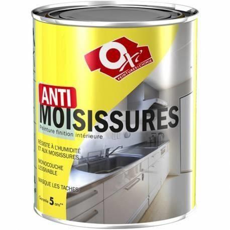 Peinture anti-moisissure - blanc - 0.5 L