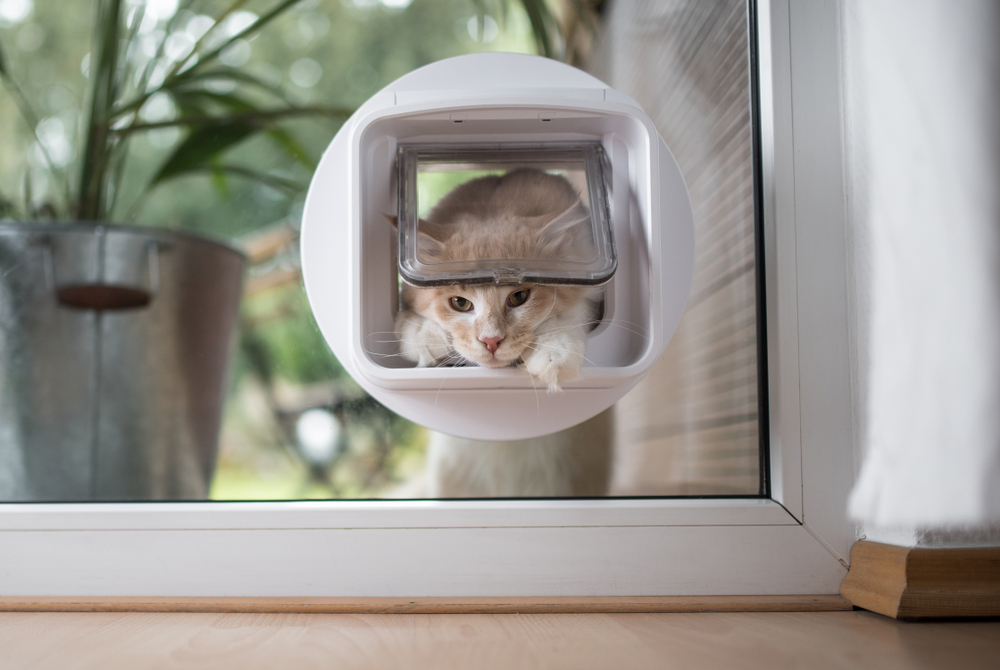 chatière-isolée-baie-vitrée
